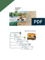 1. La Biosfera, La Ecosfera y Los Ecosistemas
