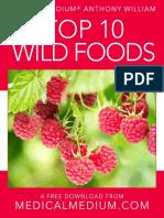 top 10 wild foods