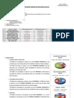Informe Infantil - Prueba de Funciones Básicas 2019