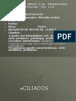6ta Clase Balantidium Coli Y Toxoplasma Gondii (1)