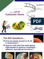 EukaryoticGeneControl(KFogler)