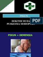 PIKUN.ppt