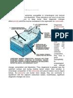 Sediment Carbonat