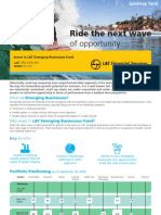 LT Emerging Business Fund