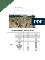 384502260-Coeficientes-de-Cultivo.docx