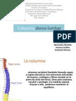 columna-dorso-lumbar