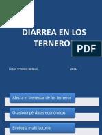 3. DIARREA EN LOS TERNEROS 2.ppt