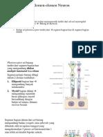 American Academy Ophthalmology  Fundamental 72-75