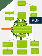 Árbol Deobjetivos de La Organización Cliente