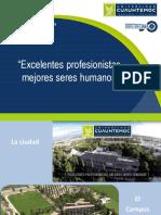 Precios Cuasuhtemoc 2019-02