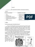 Documento Microbios y Sistemas de Defensa (1)