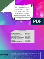 mikroling presentation fix.pptx