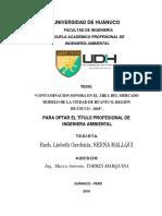 conatminacion sonora.pdf