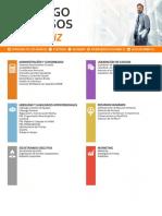 Catálogo de Cursos BIZ