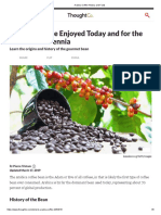 Arabica Coffee History and Facts