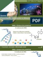 BioGeo11 AE D7 18 Crescimento Renovacao Diferenciacao Celular