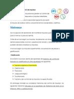 Manual para diagnóstico y tratamiento de TICS