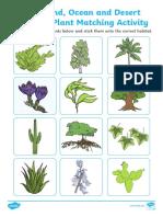 plant matching activity