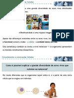 65964601-crecimento-e-renovacao-celular.pdf