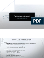 cindy_lake_safe_in_a_nutshell.pdf