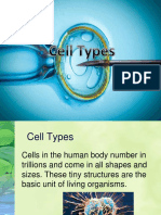 Cell types.pptx