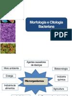 Morfologia e Citologia Bacteriana