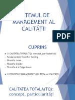 ppt management sistemul managementului.pptx