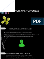 Bacterias Yar Ques