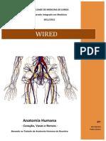 Wired - Coração, Vasos e Nervos (print edition)