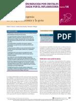 Capítulo 94 - Etiología y Patogenia de La Hiperuricemia y La Gota