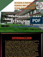 TRIANGULO QAPF 05.ppt