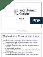 Human and Primate Evolution