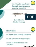 Tiburon, alternativa para la añlimentacion