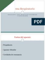 2. sistema fonatorio y respiratorio.pptx