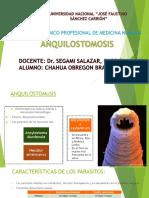 Anquilostiomosis 2019.pptx