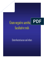 Gram Negative Aerobic and Facultative Rods