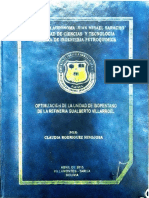 Optimizacion de Una Unidad de Isopentano de La Refinería Gualberto Villarroel