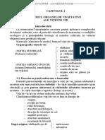 Capitolul 1 - STUDIUL ORGANELOR VEGETATIVE ALE VIŢEI DE VIE.pdf