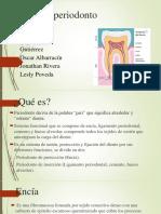 Fisiologia Del Periodonto (1)