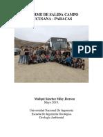 Informe Paracas
