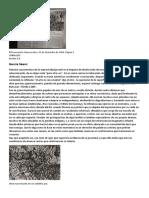 El Economista 1984 - Eb