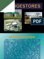 biodigestores-100909213221-phpapp02.pptx