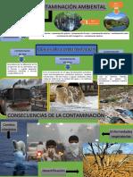 infografia contaminacion ambiental