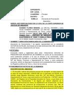 Eusebio Flores Mamani - Prescripcion Adquisitiva TACNA Modificada