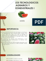 PROCESOS TECNOLOGICOS DE LAS HORTALIZAS DE FRUTOS MADURO - SANDÍA.pptx