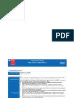 Anexo-3-Perfiles-de-cargo-RFA.pdf