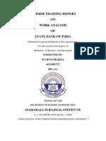 Work Analysis of SBI