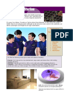 Mertactor Starlines Brochure