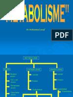 Metabolism e