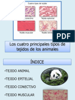 LOS TEJIDOS-BIOLOGIA.pptx